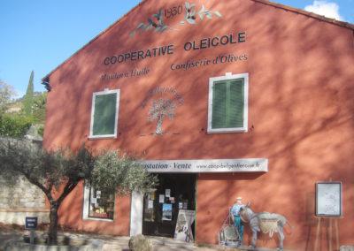 Belgentier | Cave Oléicole